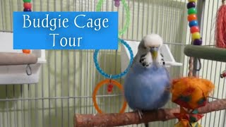 My Budgie cage set up