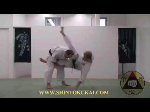 Okinawa Shorin-ryu Karate: Parent Style of Shotokan (clip 1) Image 1