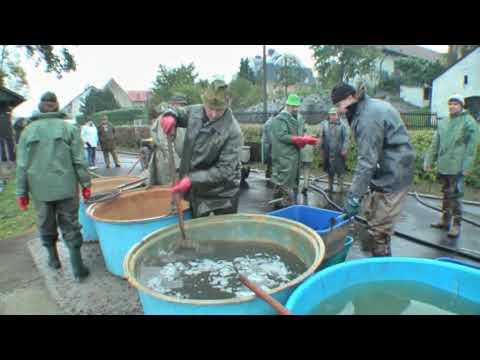 Výlov Špakovského rybníka 2009
