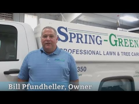 Fertilizing, Weed Control & More in Middletown, PA | Spring-Green