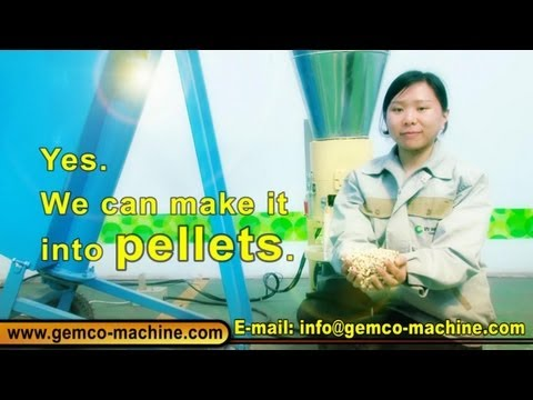 Small Homemade Wood Pellet Mill Press Machine Making Biomass Pellets From China-Hot