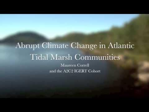 Abrupt Climate Change in Atlantic Tidal Marsh Communities