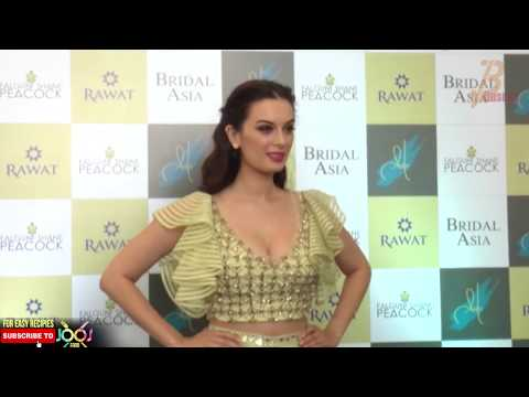 Evelyn Sharma Hot Cleavage Show At The Latest Bridal Statements thumbnail