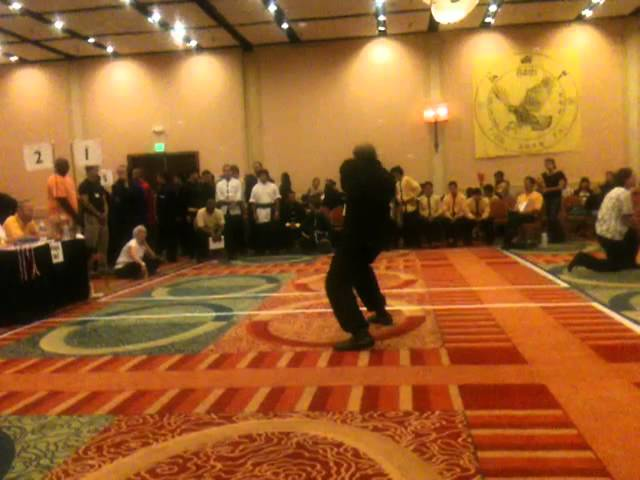 Very slow Tien Shan Pai Plum Flower Fist 2011 Kuoshou Tornament