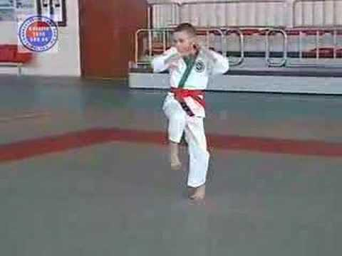 Tang Soo Do Poland VI (forms) Image 1