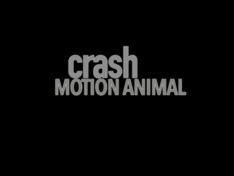 crash - Motion Animal (Official Video)
