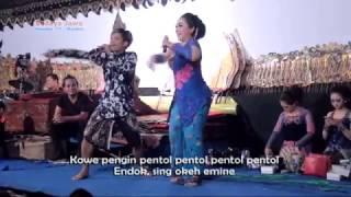 NGIDAM PENTOL~PERCIL FT LUSI BRAHMAN