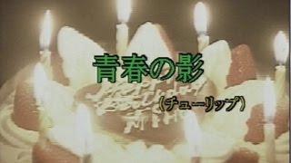 青春の影 (カラオケ) チューリップ