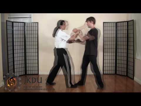 Jeet Kune Do Online Training Image 1