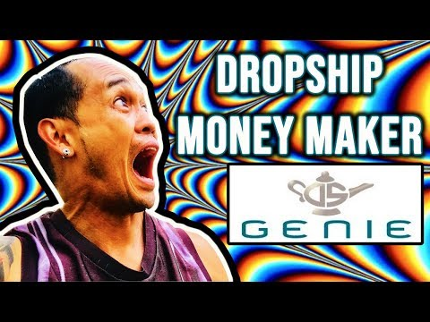 How to Make Money Dropshipping Using DS Genie - 10 day results dropshipping online business