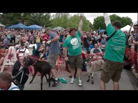 Sly Fox Brewing Company Bock Fest and Goat Races 2013