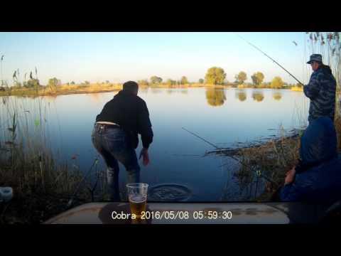 рыбалка в волжске на кривом