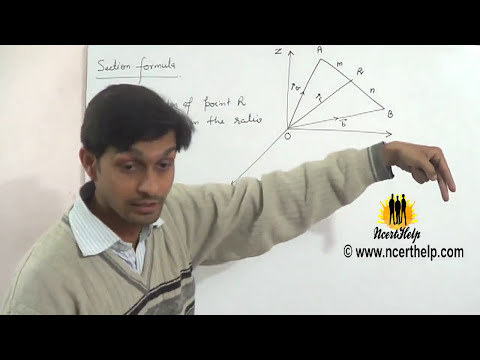 Section formula of vectors devides internally and externally in the ratio m: n (Hindi + English)