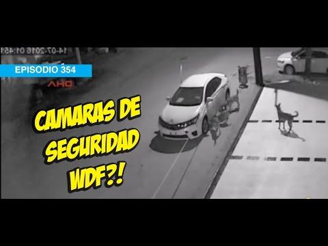 Camaras de Seguridad WDF! #5añosdeWDF