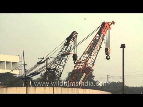 Heavy construction cranes for Delhi Metro construction