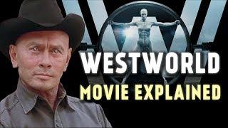 Westworld Movie explained (1973)