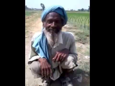 Ne Jawani Wale Din Bhul Gye Hun Kardi Fire Chatraia video