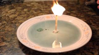 Download 7 Simple Science Tricks With Household Items 3Gp Mp4