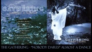 Watch Gathering Nobody Dares video