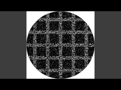 Ray's House (Kamikaze Space Programme Remix)