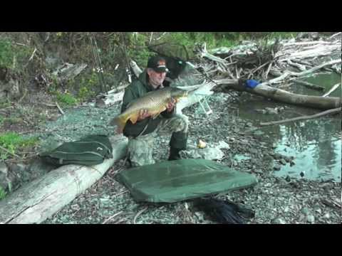 Ловля дикого сазана на Оби. Лето 2012 года. Music Videos