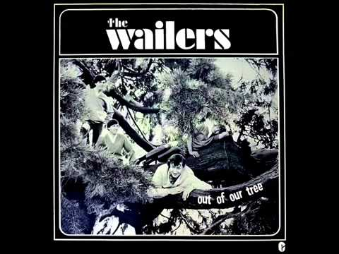 Wailers - Out Of Our Tree