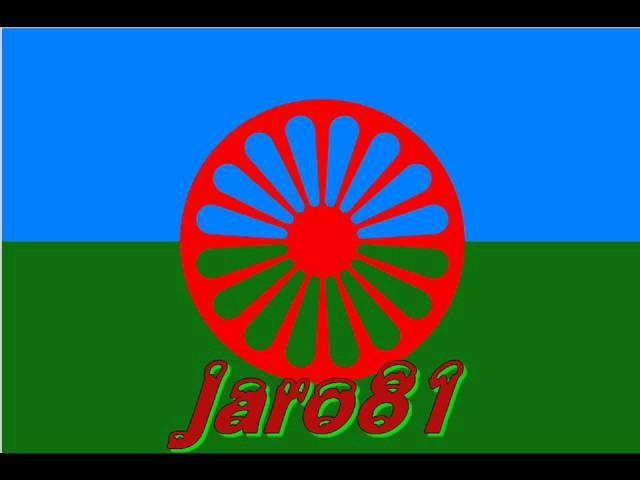 JARO81 VS ERNI 2012 0001