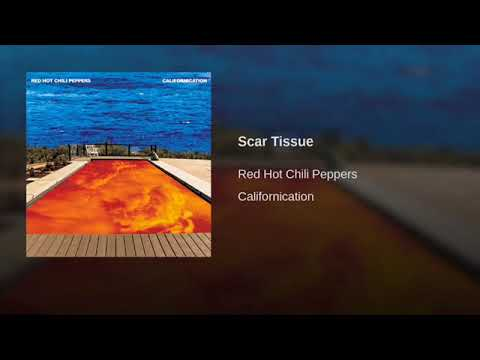 Red Hot Chili Peppers - Scar Tissue 8D   ThinKreations MP3