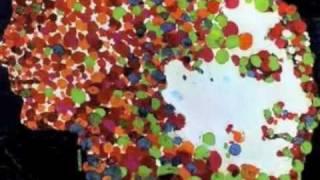Watch Harry Belafonte Crawdad Song video