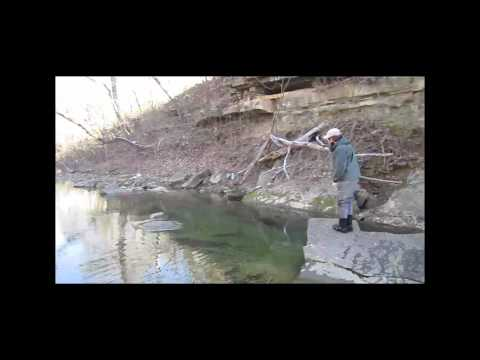 Fly Fishing Branson, Missouri | Fly Fishing the Small Creeks Near Branson, Missouri