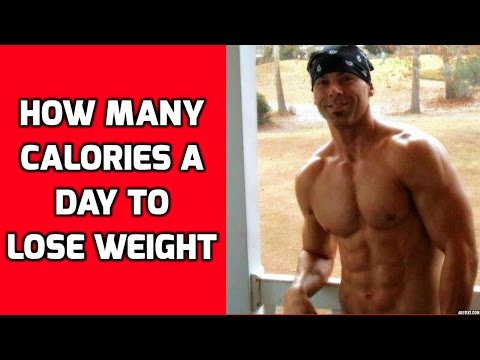 How Many Calories Should I Eat To Lose Weight - How Many Calories a Day To Lose Weight