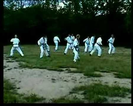Tang Soo Do (NL) - Hyung training : Chilsung Ilro Image 1