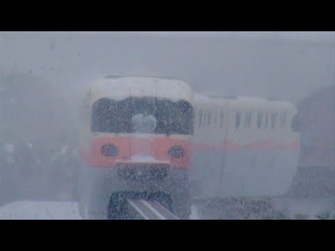 Disney Resort Line in the heavy snow (Tokyo Disney Resort)