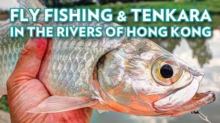 Fly Fishing & Tenkara in The Rivers of Hong Kong