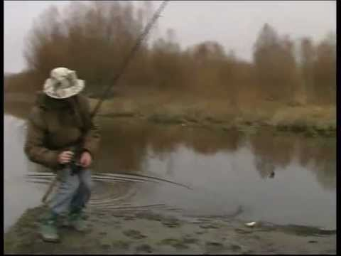Wędkarstwo Rzeczne Płocie (Feeder,spławik)