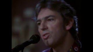 Watch Robyn Hitchcock 1974 video
