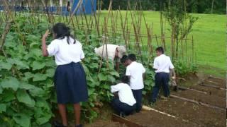 Richard Fifer Fundacion Petaquilla. Programa de Asistencia Alimenticia.avi