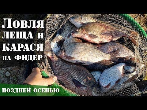 Ловля леща и карася на фидер осенью. Супер рыбалка! : РД