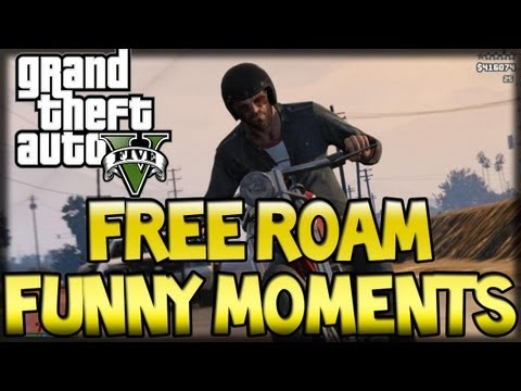 GTA V: Free Roam Funny Moments (Hooker Donkey Punch, Beach Massacre, Robo Roof)