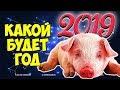 КАКОЙ БУДЕТ 2019 ГОД ГОД ЖЕЛТОЙ ЗЕМЛЯНОЙ СВИНЬИ mp3
