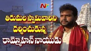 తిరుమలలో ఎంపీ రామ్మోహన్ నాయుడు :TDP MP Rammohan Naidu Visits Tirumala