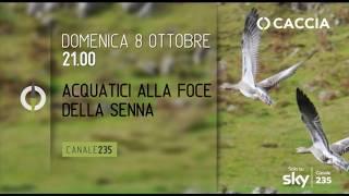 CACCIA TV SKY 235 - ACQUATICI ALLA FOCE DELLA SENNA - promo HL