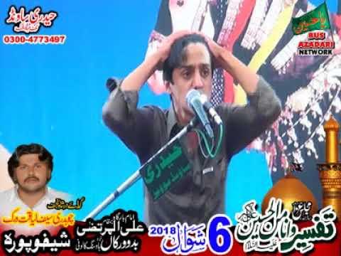 Zakir Ali Abbas Askari majis 6 shawal 2018 bado virka SKP