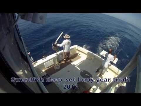 PIER Swordfish deep-set buoy gear trials
