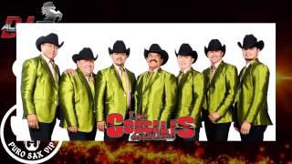 Los Corceles de Linares - La Chica 240 ♪ 2016