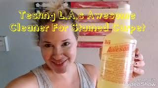 Testing - L.A.s Totally Awesome Cleaner On Stained Carpets