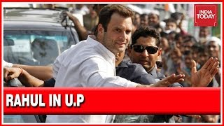 Rahul Gandhi In Amethi, U.P | Nomination Papers Accepted