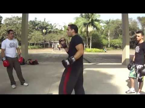 THE JEET KUNE DO EVOLUTION - Progressive against Original