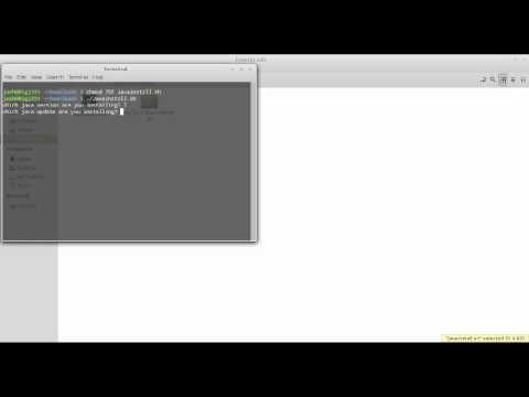 Installing Java on Linux Mint and Ubuntu
