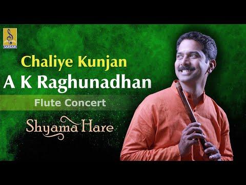 Chaliye Kunjan - A Flute Concert By A.K.Raghunadhan